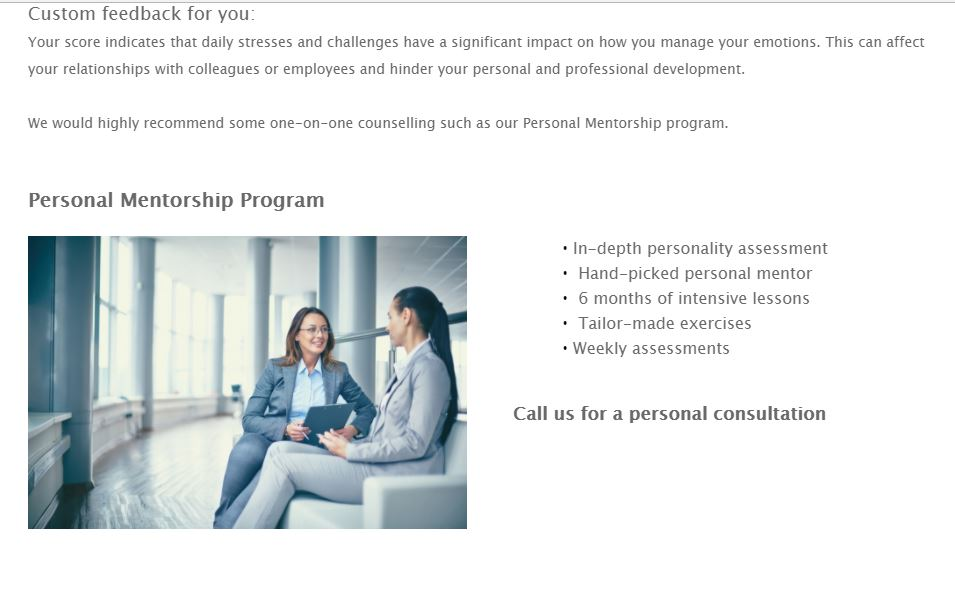 example of an online assessment tool for a personal mentorship program